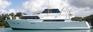 Elite 16m Midpilothouse